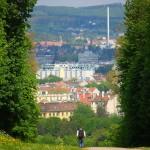 Der Fakten-Check für das Leben und Wohnen in Österreich